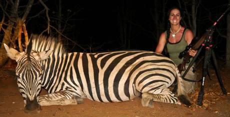 MELISSA BACHMAN - zebra