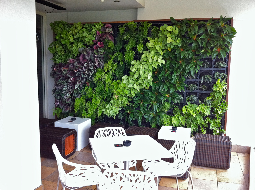 Vertical Gardening, a sustainable food source