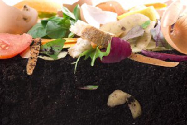 How to Compost to benefit your garden