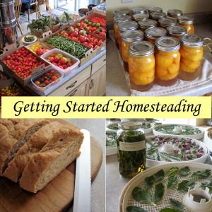 starting homesteading