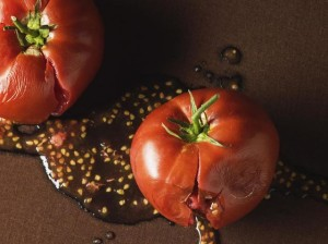 tomato plants, how to seeds